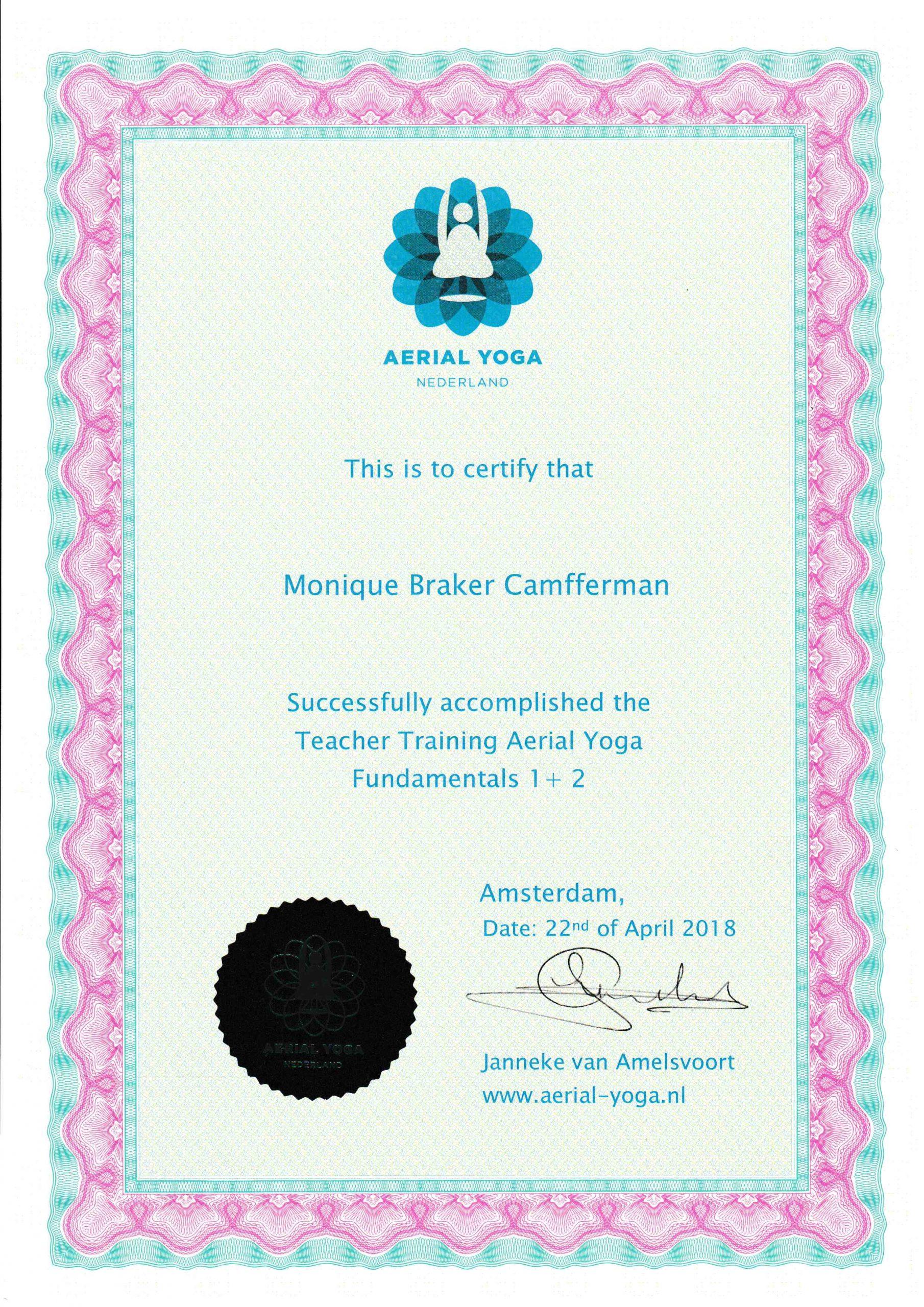 Aerial Yoga Fundamentals 1 & 2