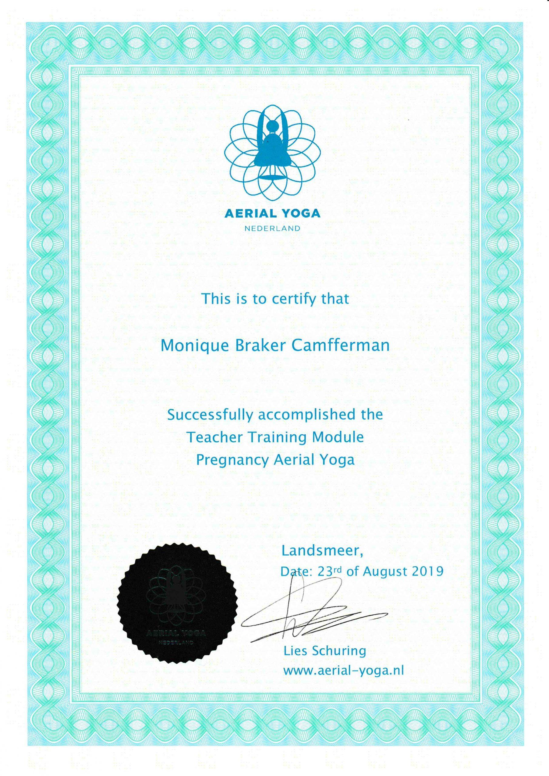 Aerial Yoga Pragnancy